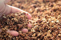 Granola (o muesli fatto in casa)